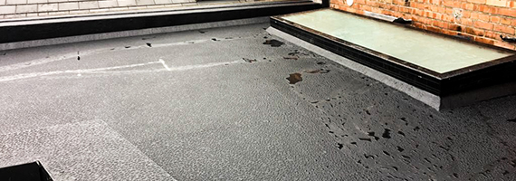 Fibre Glass Roofing in Dublin