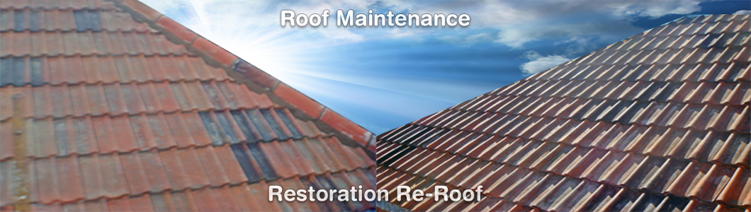 Tile Roof Before and After